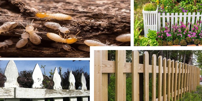 How To Stain Your Wood Fence To Prevent Termites