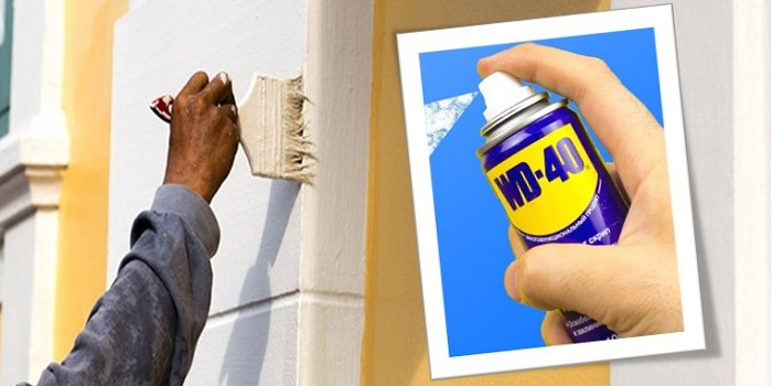 Wd40 From Walls