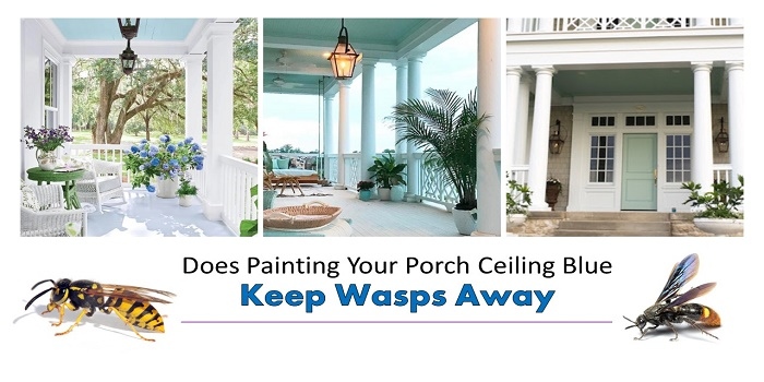 does painting your porch ceiling blue keep wasps away