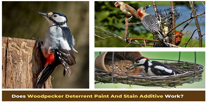 woodpecker deterrent paint and stain additive