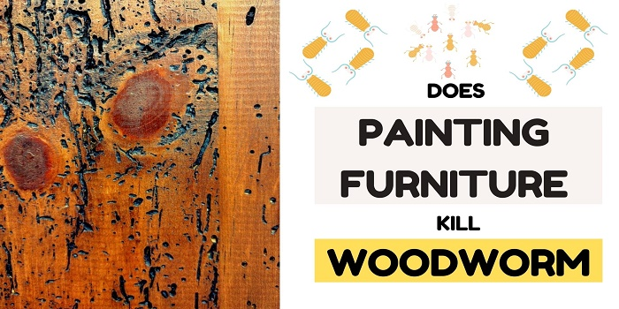 does painting furniture kill woodworm